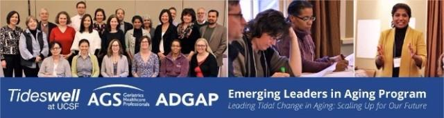 Tideswell Emerging Leaders in Aging Program